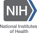 Large NIH Clinical Trial Illuminates Long-Term Health Effects of HIV - image